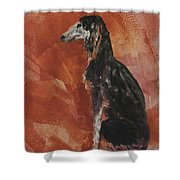 Posed Perfectly Shower Curtain