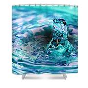 Poseidons Warriors Xiv Shower Curtain