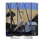 Posing Egret Shower Curtain