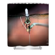 Posing For You Shower Curtain