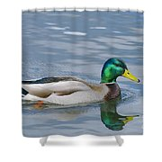 Poster Boy Shower Curtain