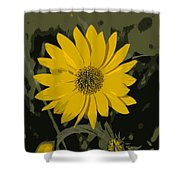 Posterized Smooth Oxeye Shower Curtain