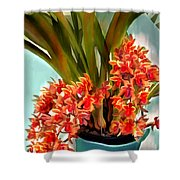 Pot Of Rust Orange Orchids Shower Curtain