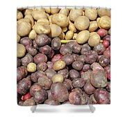 Potato Variety Display Shower Curtain