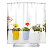 Potted Flowers Shower Curtain