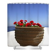 Potted Geranium Shower Curtain