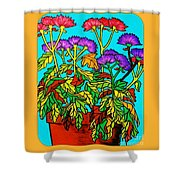 Potted Mums Framed Shower Curtain