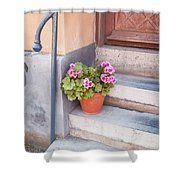 Potted Plant Front Of House Shower Curtain