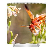 Potter Wasp Female Shower Curtain