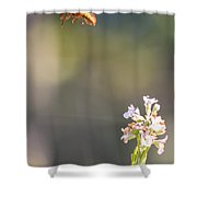 Potter Wasp In Flight Shower Curtain