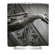 Pouncing Dragon Shower Curtain