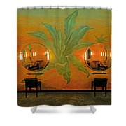 Powder Room Radio City Music Hall Shower Curtain