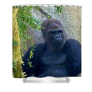 Powerful Female Gorilla Shower Curtain