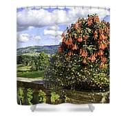 Powis Castle Terrace Shower Curtain