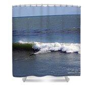 pr 128 - Surfer Dude Shower Curtain
