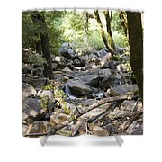 pr 135 - A Very Dry Stream  Shower Curtain