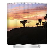pr 238 - Trees at Sunset Shower Curtain