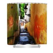 Prague - Street Shower Curtain