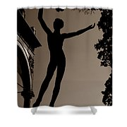 Prague Castle Statue Shower Curtain