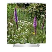 Prairie Blossoms Shower Curtain