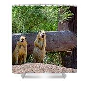 Prairie Dogs In Bryce Shower Curtain