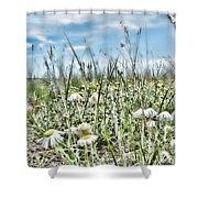 Prairie Flowers And Grasses Shower Curtain