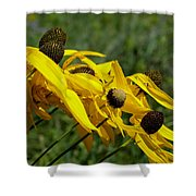 Prairie Flowers In Wind Shower Curtain