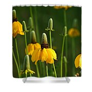 Prairie Flowers Shower Curtain