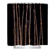 Prairie Grass Number 3 Shower Curtain
