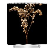 Prairie Life Number 3 Shower Curtain