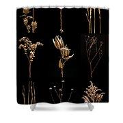 Prairie Plant Still Life Shower Curtain