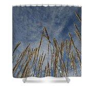Prairie Prayers Shower Curtain