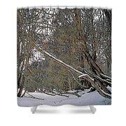 Prairie Winter 2 Shower Curtain