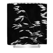 Prarie Grass Shower Curtain