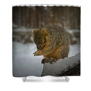 Prayer Time Shower Curtain