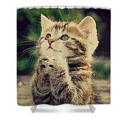 Praying Cat Shower Curtain