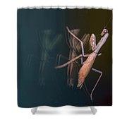 Praying Mantis 1 Shower Curtain