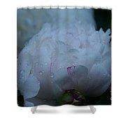 Pre Dawn Rain Shower Curtain