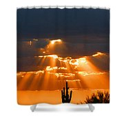 Pre Sunset Sky With Saguaro Shower Curtain