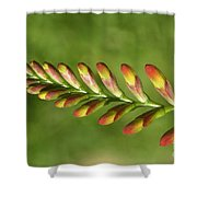 Prehistoric Flower Shower Curtain