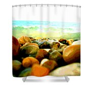 Prehistoric Surface 2 Shower Curtain