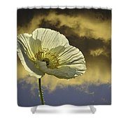 Prelude To Spring Shower Curtain