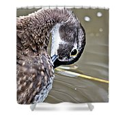 Prettily Preening Shower Curtain