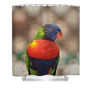 Pretty Bird - Rainbow Lorikeet Shower Curtain