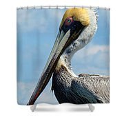 Pretty Blue Eyes Shower Curtain