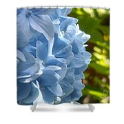 Pretty Blue Flower Shower Curtain