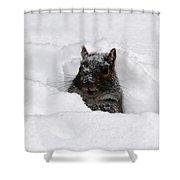 Pretty Cool Cat... Shower Curtain