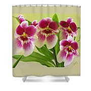 Pretty Faces - Orchid Shower Curtain