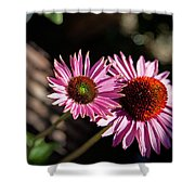 Pretty Flowers Shower Curtain by Joe Fernandez