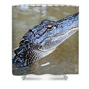 Pretty Gator Shower Curtain